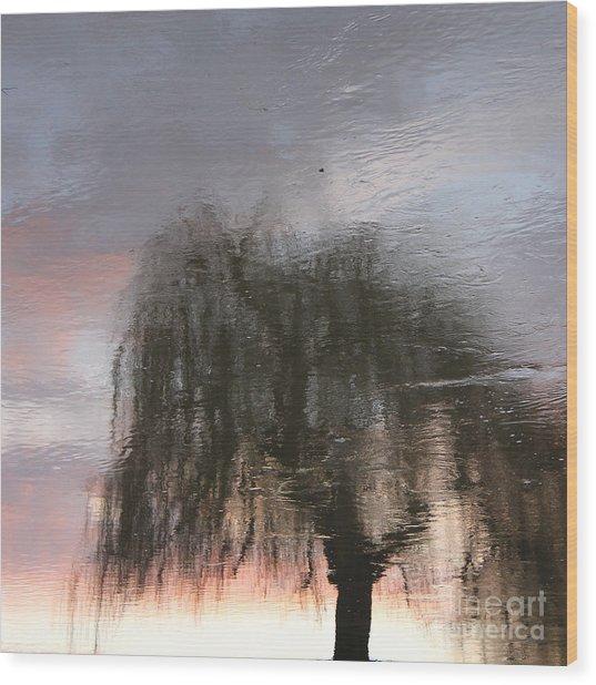 Weeping Willow Wood Print by Karin Ubeleis-Jones