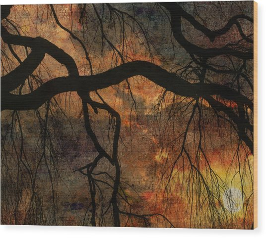 Weeping Willow Sunset Wood Print