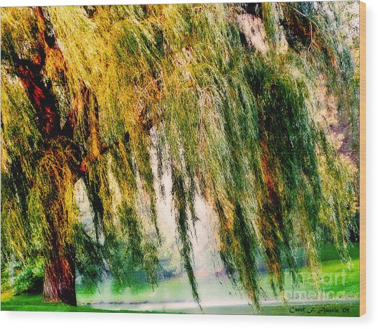 Weeping Willow Tree Painterly Monet Impressionist Dreams Wood Print