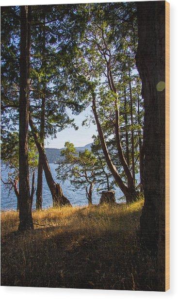 Welbury Wood Print