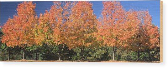 Welcome Autumn Wood Print