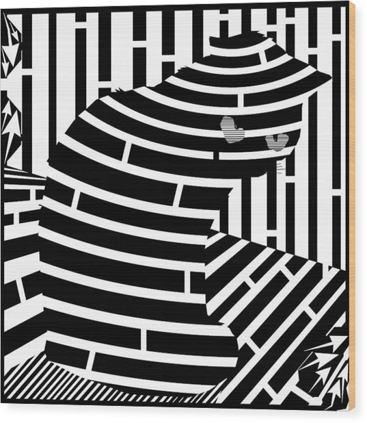 Welcome To The Cat Side Maze Wood Print by Yonatan Frimer Maze Artist