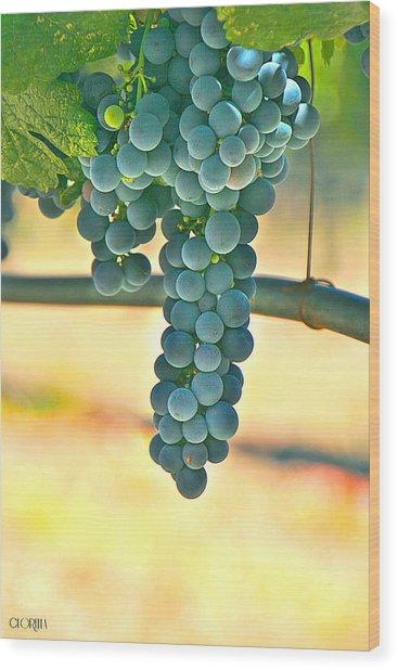 Well Hung Vine Wood Print