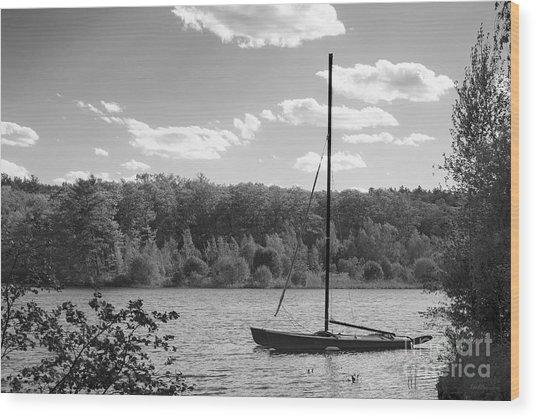 Wellesley College Waban Lake Wood Print by University Icons