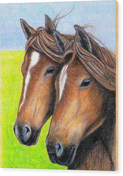 Welsh Mountain Ponies Wood Print