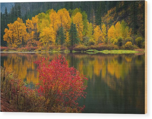 Wenatchee River Reflections Wood Print