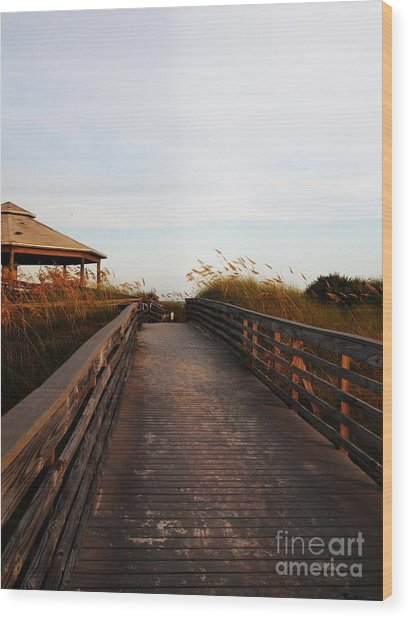 Went For A Stroll On The Boardwalk Wood Print by Meghan Pettis