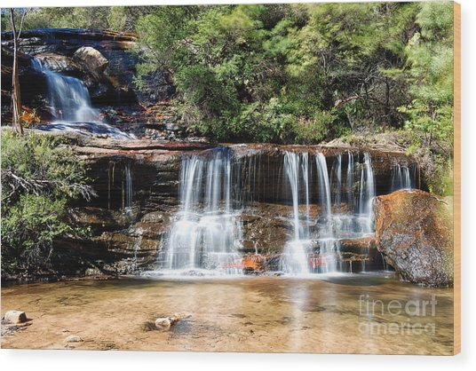 Wentworth Falls Wood Print