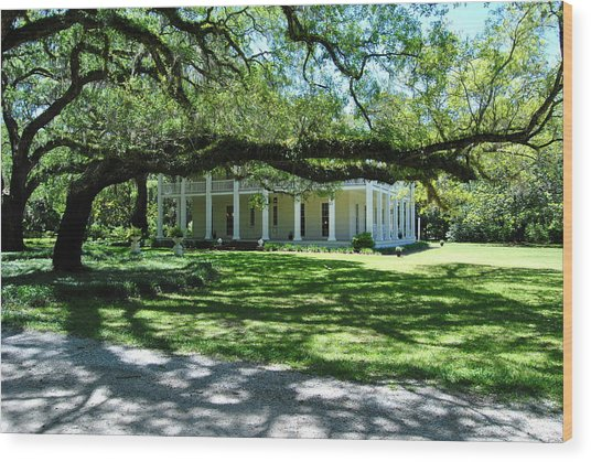Wesley House And The Oak Wood Print by Michele Kaiser