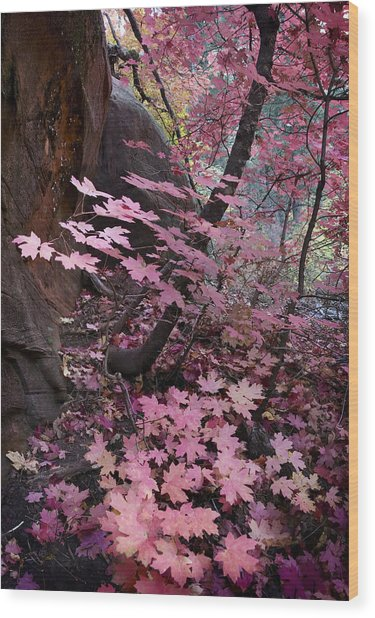 West Fork Fall Colors Wood Print