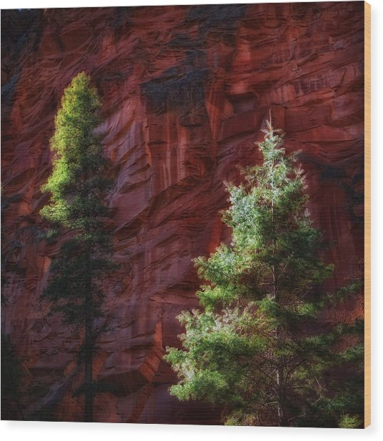 West Fork Rock Face Number Three Wood Print
