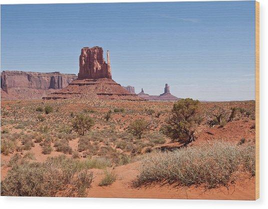 West Mitten And Sentinal Mesa Wood Print