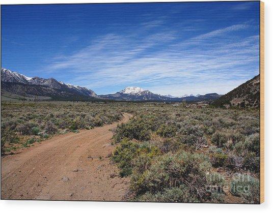 West Of The Sierra Nevada  Wood Print