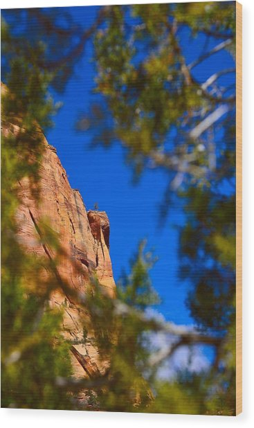 West Rim Trail Wood Print