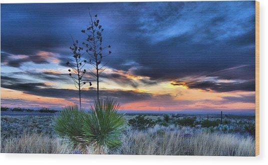 West Texas Yuccas Wood Print