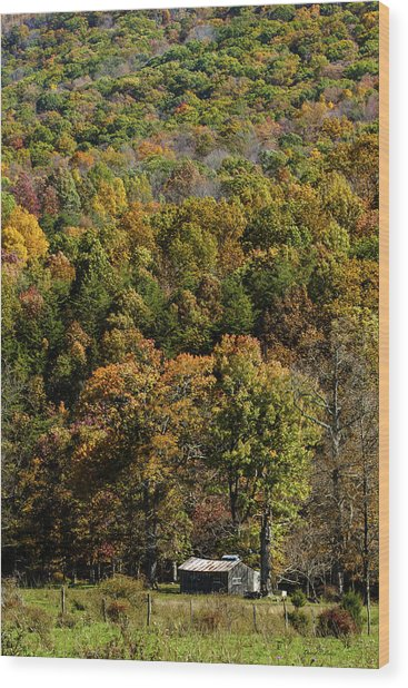 West Virginia Color Wood Print by David Lester
