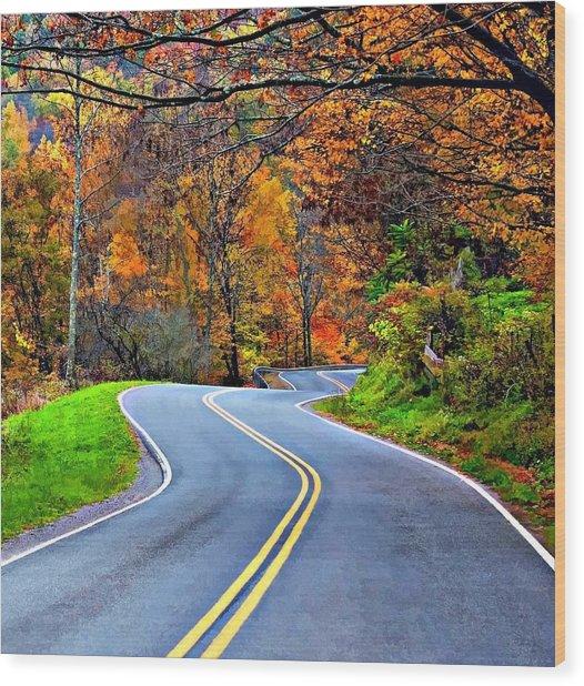West Virginia Curves 2 Wood Print