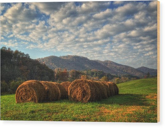 Western North Carolina Hay Field Wood Print