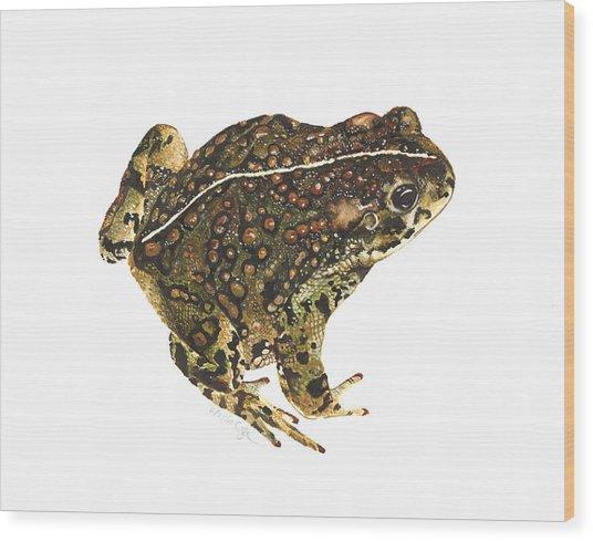 Western Toad Wood Print