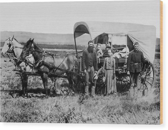 Westward Family In Covered Wagon C. 1886 Wood Print