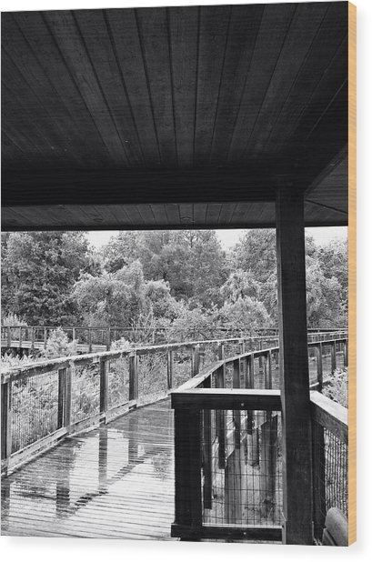 Boardwalk In Black And White 4 Wood Print