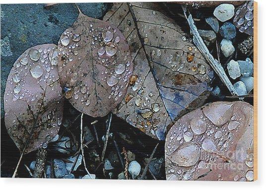 Wet Leaves Wood Print