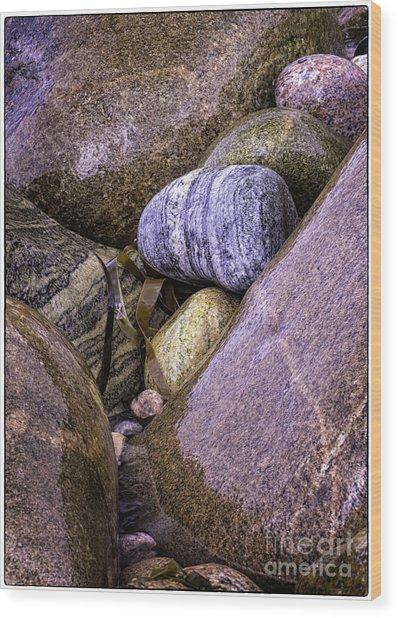 Wet Pebbles Wood Print by George Hodlin