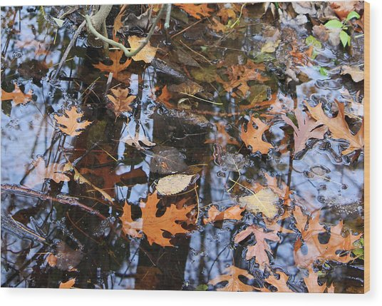Wetland Reflections 12 Wood Print by Mary Bedy