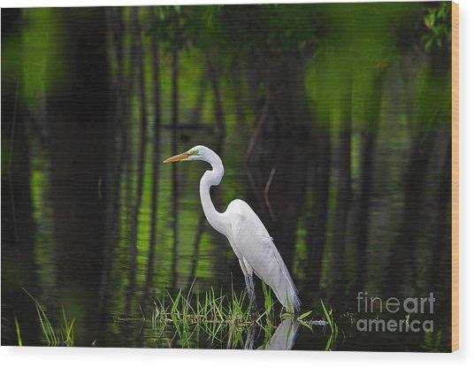 Wetland Wader Wood Print
