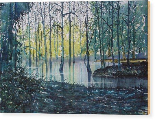 Wetlands On Skipwith Common Wood Print