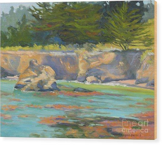Whalers Cove Point Lobos Wood Print by Rhett Regina Owings