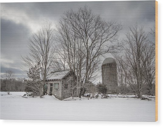 What Remains Wood Print by Bryan Bzdula