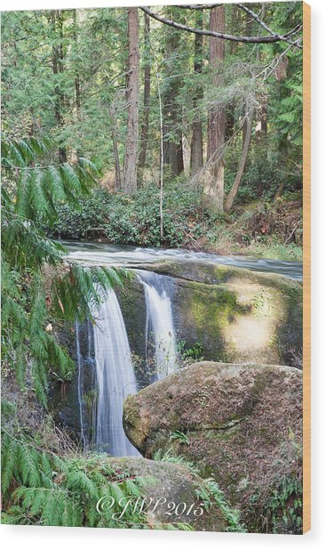 Whatcom Falls  Wood Print