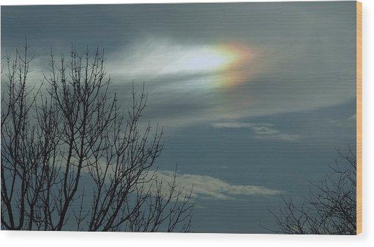 Wheaton Rainbow Wood Print by Todd Sherlock
