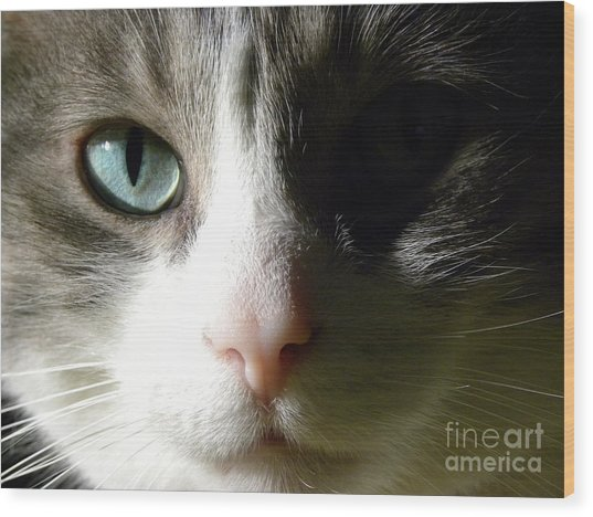 When I Look In Your Eyes.... Wood Print by Laura Yamada