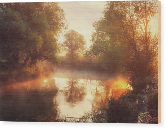 When Nature Paints With Light II Wood Print