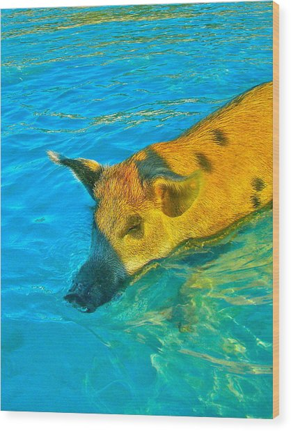 When Pigs Swim Wood Print