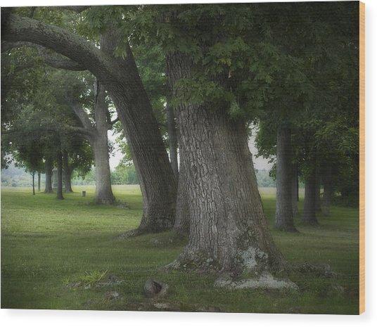 Where Reynolds Fell Wood Print