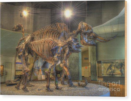 Where's Dino? Wood Print