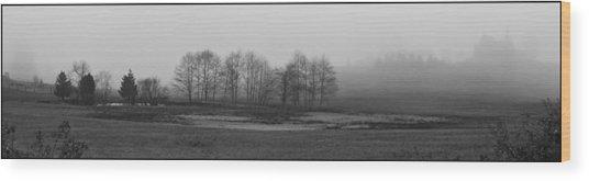 Whidbey Island Meadow In Fog Wood Print