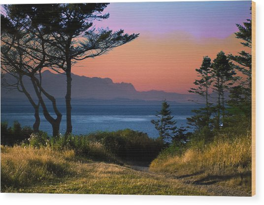 Whidbey Island Sundown Wood Print