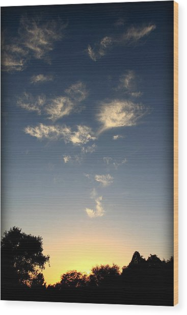 Whimsical Sunset Wood Print by Michael Curry