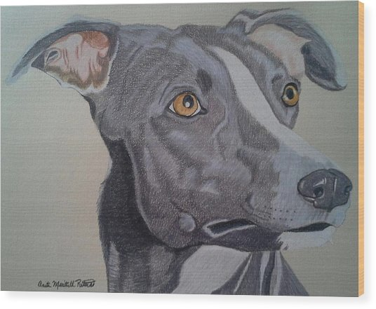 Whippet - Grey And White Wood Print