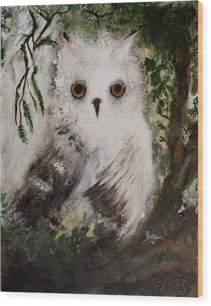 Whisper The Snowy Owl Wood Print