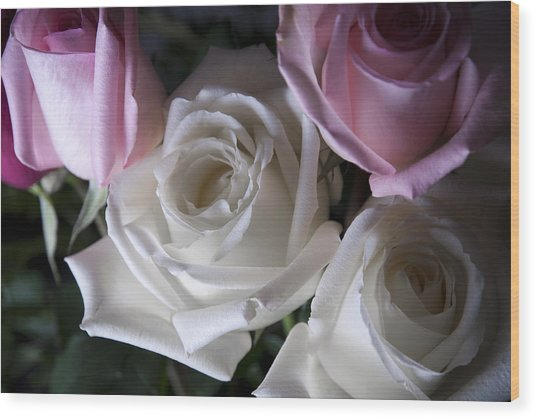 White And Pink Roses Wood Print