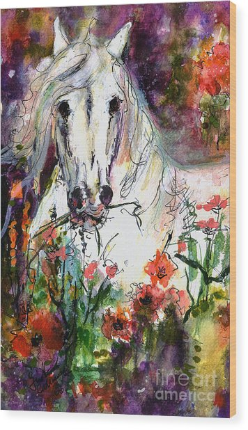 White Andalusian Stallion In Poppy Field Painting By Ginette Wood Print