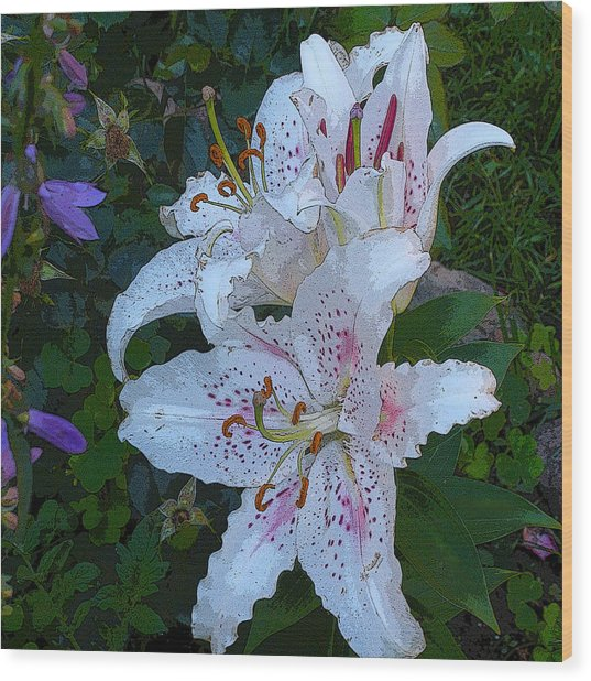 White Asian Lilies Wood Print
