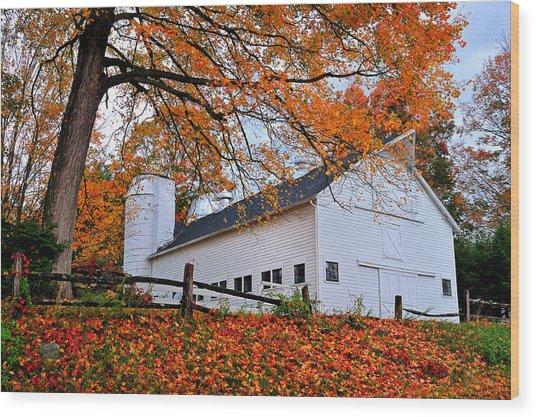White Barn And Silo Wood Print