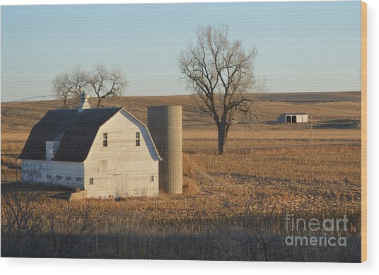 White Barn With Silo Wood Print
