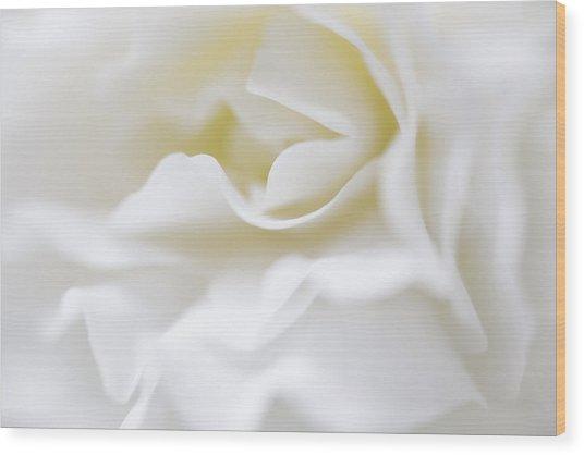 White Begonia Petals Wood Print